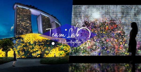 将花园城市置身艺术汪洋,TeamLab联合新加坡滨海湾花园,2020绚丽艺术展正式开跑!